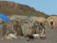 Members of the El Molo tribe are pictured in the village of Komote, on the shores of Lake Turkana, northern Kenya, last year.