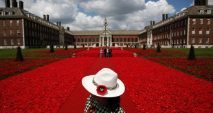 A volunteer stands to the entrance of the 5000 Poppies Garden at the Chelsea Flower Show, created by Australians Lynn Berry and Margaret Knight with designer Phillip Johnson. The project began as a small tribute to Berry and Knight's fathers, who fought in World War II.