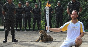 Brazilian physiotherapist Igor Simoes Andrade poses for picture next to jaguar Juma as he takes part in the Olympic Flame torch relay in Manaus, Brazil, on Monday.