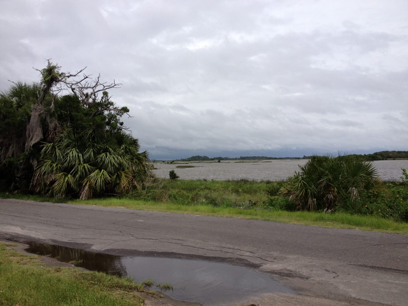 View of Gulf of Mexico from the Shellfish and Aqualculture Research and Education Facility in Cedar Key.