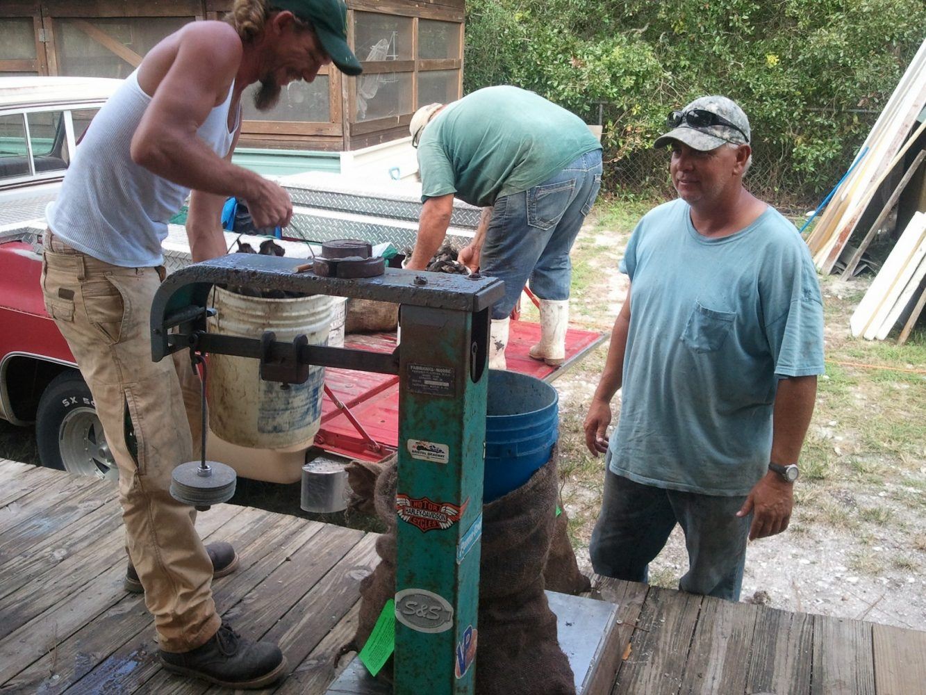 Oystermen weigh their catch.