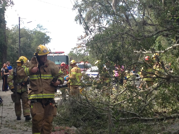 Gainesville Fire Rescue workers remove debris and collapsed power lines after a tree fell on W. University Avenue near NW 27th Terrace.