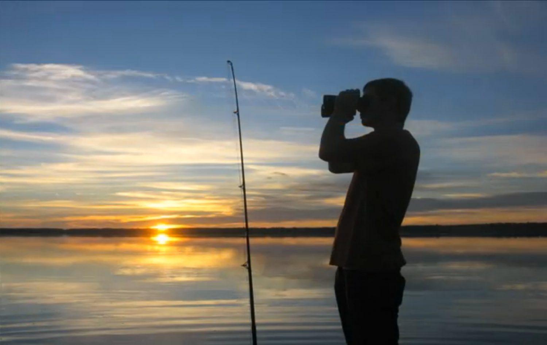 David Kurtz scans Newnans Lake for black dots that actually are alligators hidden underwater.