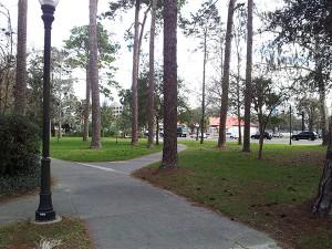 Heavener Hall trees