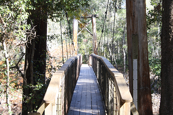 According to the O'Leno State Park lore, this suspension bridge was built by the CCC when they were building the park during the Great Depression.