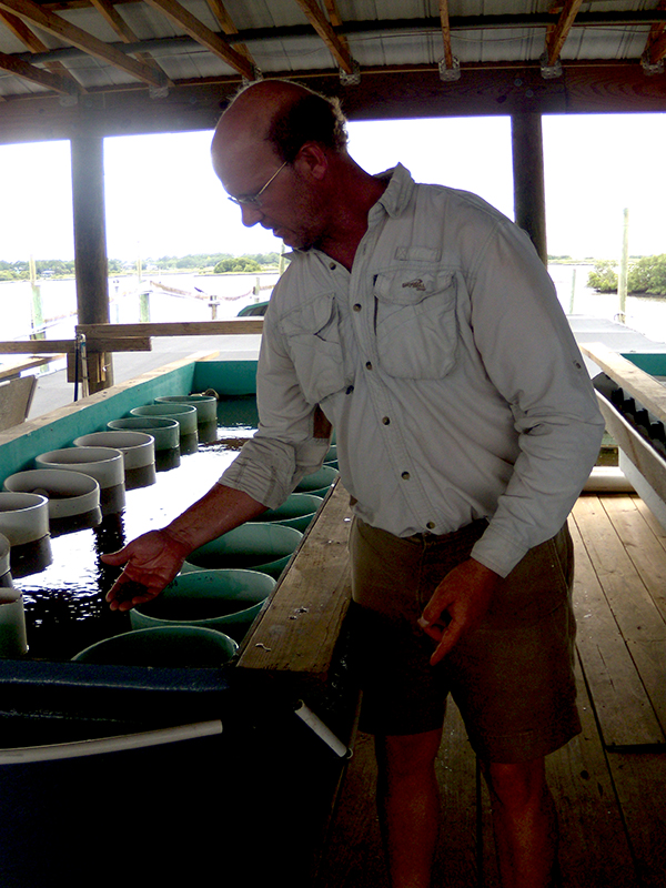 Shawn Stephenson, owner of Southern Cross Sea Farms, discusses the area's clams heading into of hurricane season.