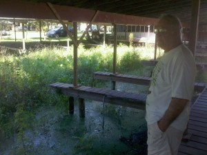 Cross Creek Lodge owner Gary Palmeter stands by grass-filled boat slips.