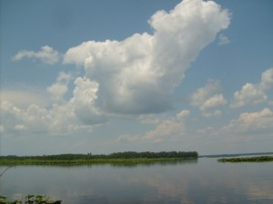 Lochloosa Lake in Alachua County