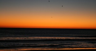 Sunrise, Amelia Island, Fla. — Dec. 31, 2008