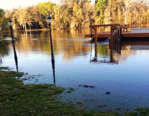 Adkins' backyard and dock are submerged below the rising waters of the Suwannee River.
