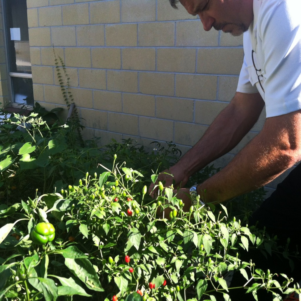 Lieutenant Preston Lewis hopes to expand the Salvation Army garden soon. He thinks that learning to grow food and eat healthy can have a positive long-term impact on children's lives.