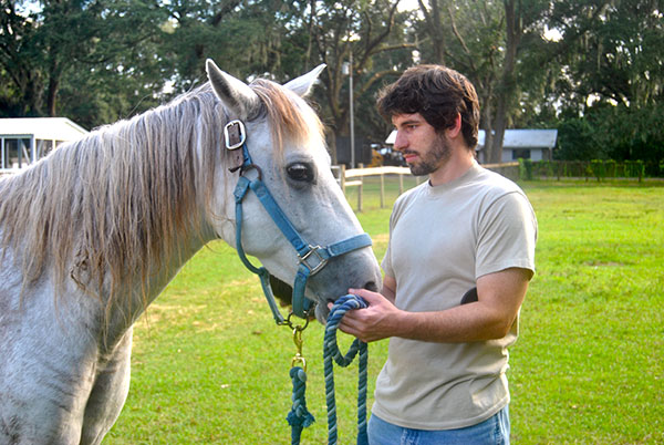 """William Drew, 26, grooms Dreamer, a gelding horse who is unable to breed.  Drew said working with the horses is similar to his experience in the army because he has to be aware of his surroundings and anticipate what another person or horse is going to do. """"This has been a learning experience for me all the way around,"""" he said."""