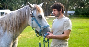 "William Drew, 26, grooms Dreamer, a gelding horse who is unable to breed.  Drew said working with the horses is similar to his experience in the army because he has to be aware of his surroundings and anticipate what another person or horse is going to do. ""This has been a learning experience for me all the way around,"" he said."