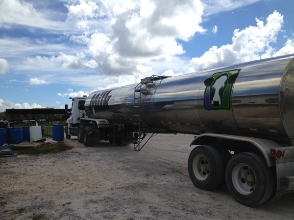 Tested and cleared milk en route to distribution from North Florida Holsteins.