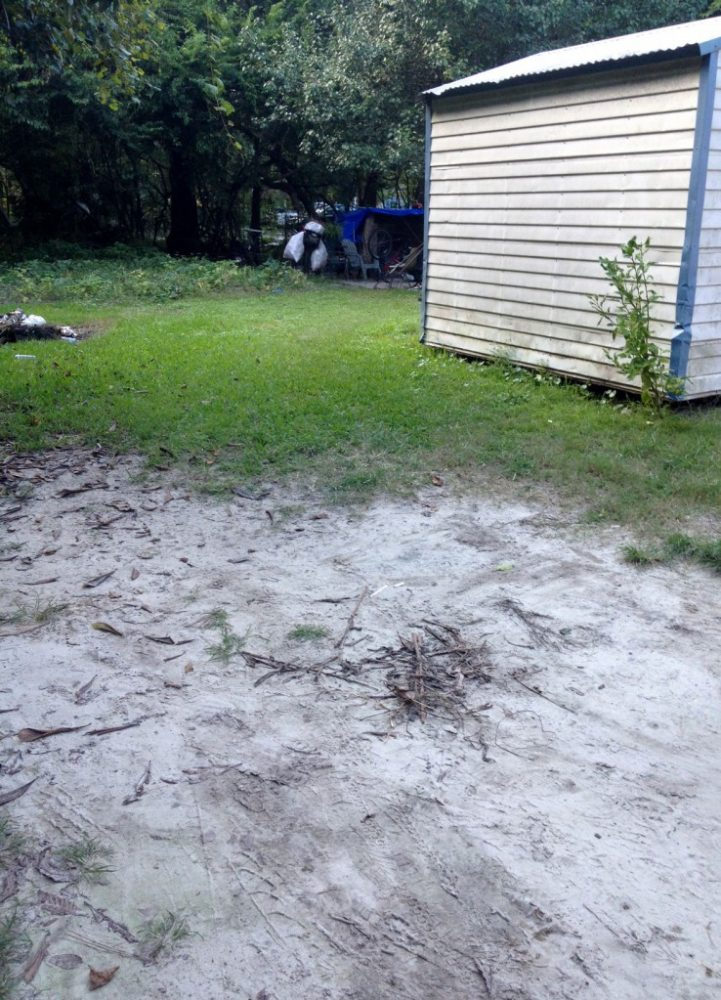 Gainesville Police officers found the shooting victim by this shed. Officers are still investigating the shooting.