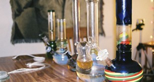 "Florida's recent ""bong ban"" prohibits the sale of drug paraphernalia used for illegal substance use."