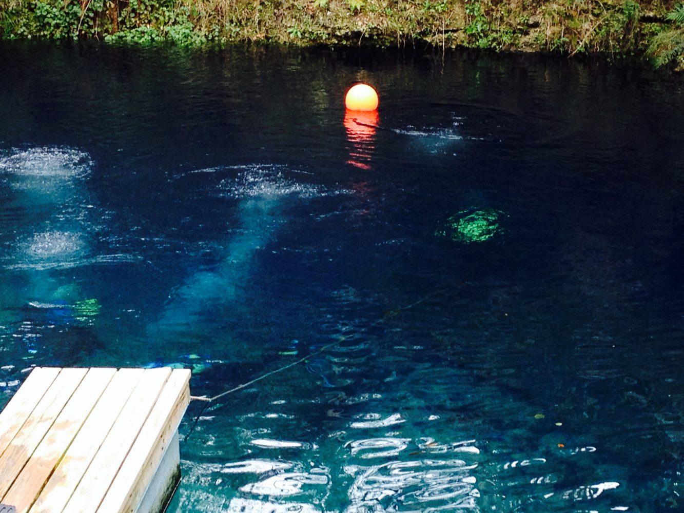 Cave Divers Defend Sport After Deaths At Eagle S Nest Sink