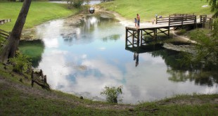 A family looks over Guaranto Spring in Dixie County. In Florida, 73 percent of network springs exceed the state standard for nitrogen, which some say can affect the ecology of a spring.
