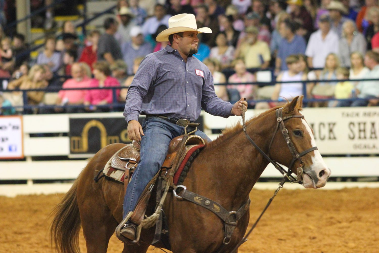 Leo Mobley of McAlpine, Fla. rides back to the shoots after competing in the steer wrestling competition at the Ocala Pro Rodeo on Saturday night, March 22, 2014.