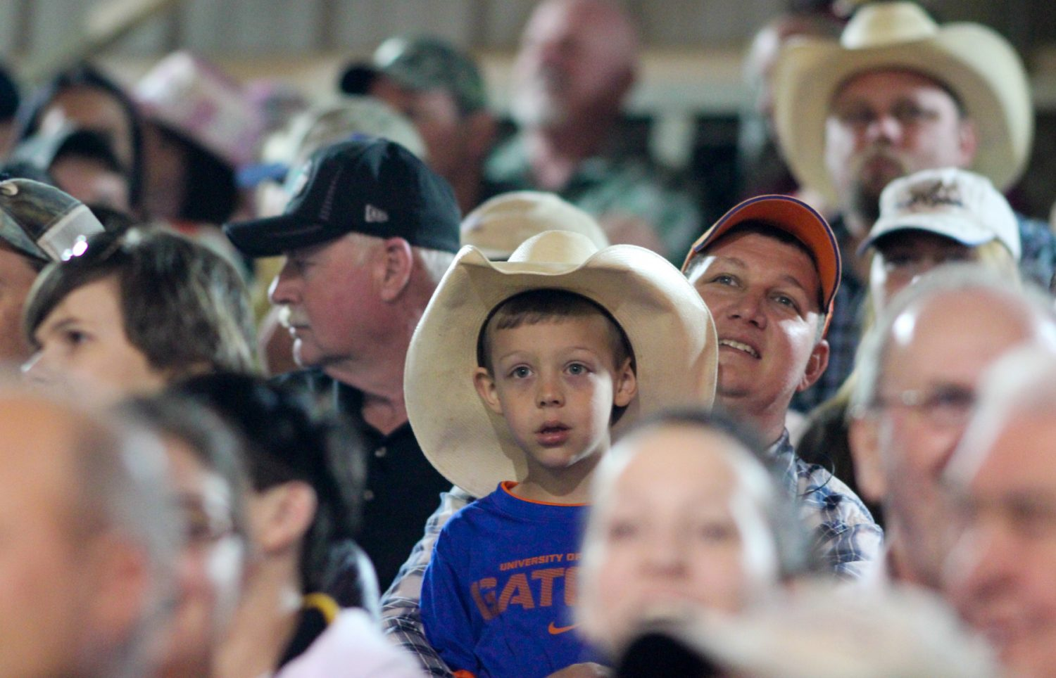 Fans of the rodeo look on as events unfold at the Ocala Pro Rodeo on Saturday night, March 22, 2014.