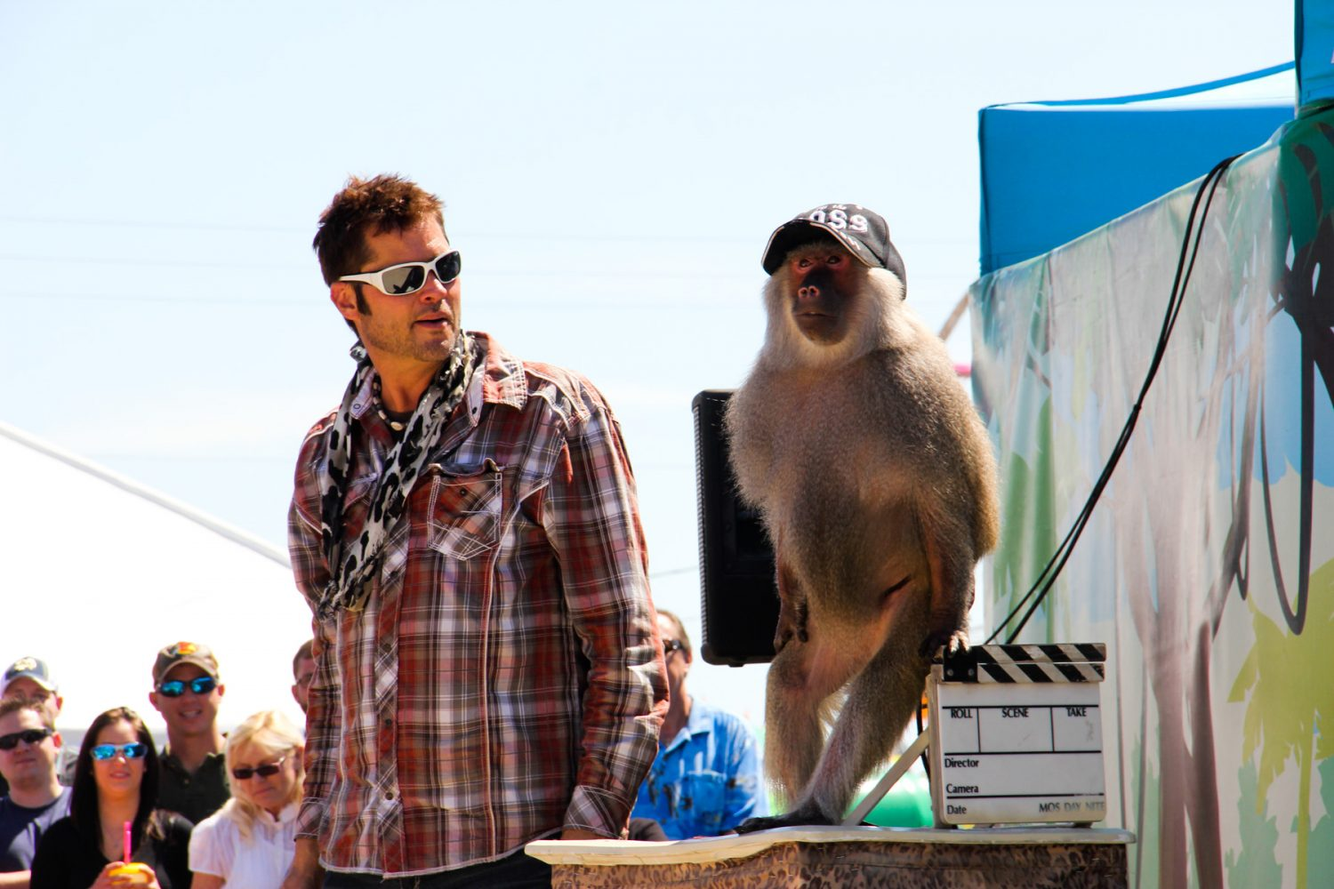 """""""Wild About Monkeys"""" host Kevin Keith performs with Dagnee the baboon at the Florida Strawberry Festival on Sunday afternoon, Mar. 9, 2014. The act also included a border collie, birds and other monkeys."""