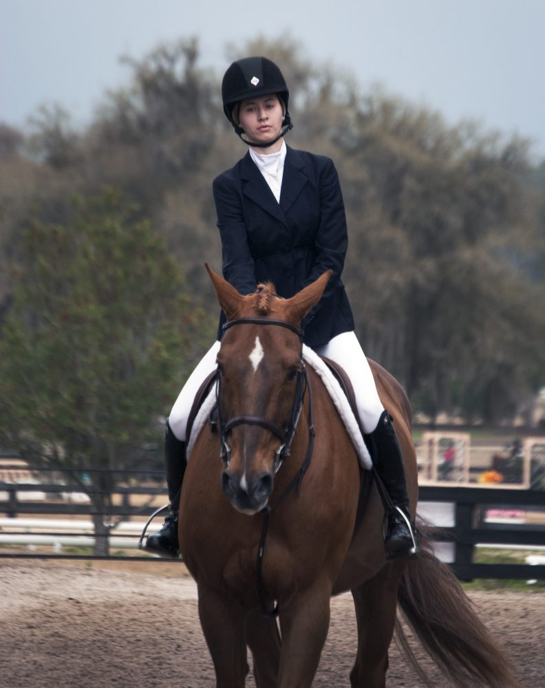 Alyson Gurney, 16-year-old rider from Washington D.C., participates in the Junior Hunter 16-17 competition during the sixth circuit of HITS, Horse Shows In The Sun, in Ocala on Feb. 23. Gurney has been showing horses since the age of 6.