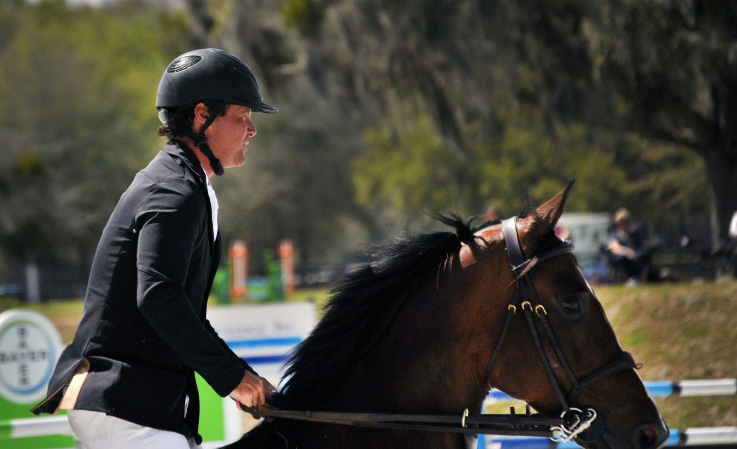 Daniel Damen of Ocala, Fla. starts his round with horse Quintus 66. Damen finished with a time of 82.890 at the $100,000 Sullivan GMC Truck Grand Prix at HITS on Sunday.