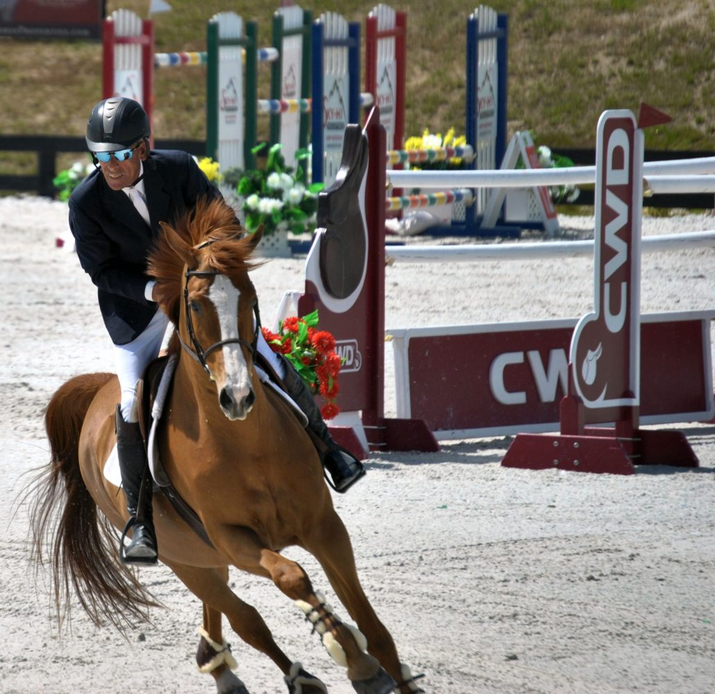 Ian Silitch of Ocala, Fla. represents Gaston Family Investments, LLC as he shows Vanita during the second round of the $100,000 Sullivan GMC Truck Grand Prix at HITS on Sunday.