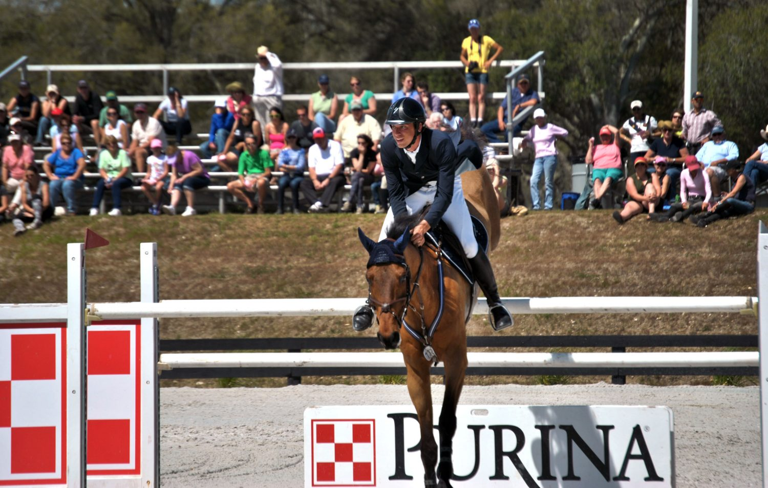 Jared Petersen, of Archer, Fla., shows Derek Petersen's horse, Titus 2:11, at the $100,000 Sullivan GMC Truck Grand Prix of HITS on Sunday.