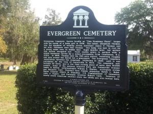 Evergreen sign