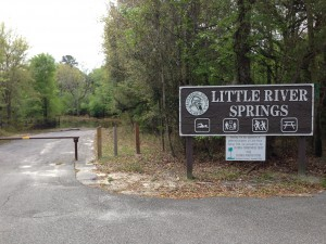Little River Springs County Park, located 3.5 miles north of Branford, Fla., is one of the springs protection and restoration projects recently approved by the Suwannee River Management District Governing Board. The refurbishments will repair the eroding shoreline damaged by river floods over the years.