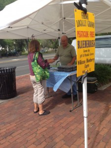 Jeff Groves, the owner of Williston Blueberry Farm, gives samples of his pesticide-free blueberries to customers at the Union Street Farmers Market on Wednesday in Downtown Gainesville.