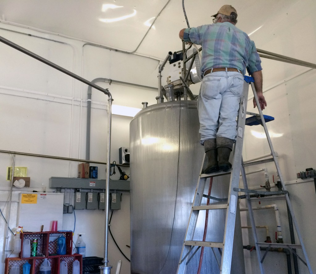 Howard Kurtz checks the volume of a tank of raw milk at his dairy, Kurtz and Sons, in Live Oak on Tuesday, Decmeber 17th.