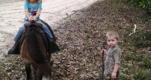 Martin's son, Trenton, leads Piper through a pony ride.