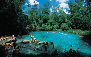 Park visitors enjoy a day in the crystal clear waters at Ichetucknee Springs State Park. Guests can enjoy tubing from the north entrance beginning Memorial Day Weekend.