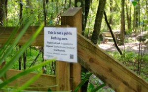 Signs indicating unsafe levels of bacteria in Hogtown Creek were posted in June, according to Linda Demetropoulos, nature manager of the city of Gainesville Parks Department. Visitors can find these signs around various areas of local parks.