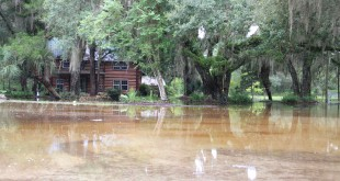 Sonja Reed's log-cabin, built in 1912, was one of the 14 homes flooded on her property. She said it had about six inches of water inside the first floor. Maria Valencia / WUFT News