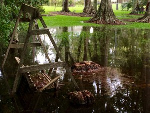 A porch swing sits almost submerged along the banks of Hampton Lake in Bradford County on Monday afternoon. Bradford County has experienced 8 inches of rain as of Monday, sending the county into a local state of emergency.