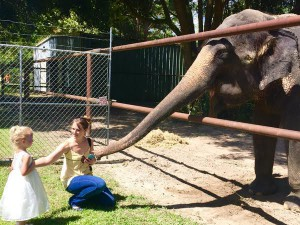 A mother and her young daughter feed Patty, the Asian elephant.