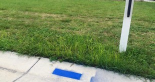 Newberry resident Drew Cox is offering to spray blue lines in support of the police in the driveways of residents who request it. So far he has spray-painted more than 40 driveways.