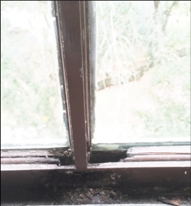 A damaged window frame located on the third floor hallway of Norman Hall. The windows go unwashed because they are fragile and will fall out if pressure washed.