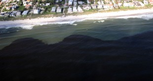 Harmful Algal Blooms, known as red tides, in the Gulf of Mexico. Red tide is a high concentration of microscopic algae that occurs naturally. FWC scientist Alina Corcoran said the species is regularly found in the Gulf of Mexico but can make its way to other parts of Florida due to winds and currents.