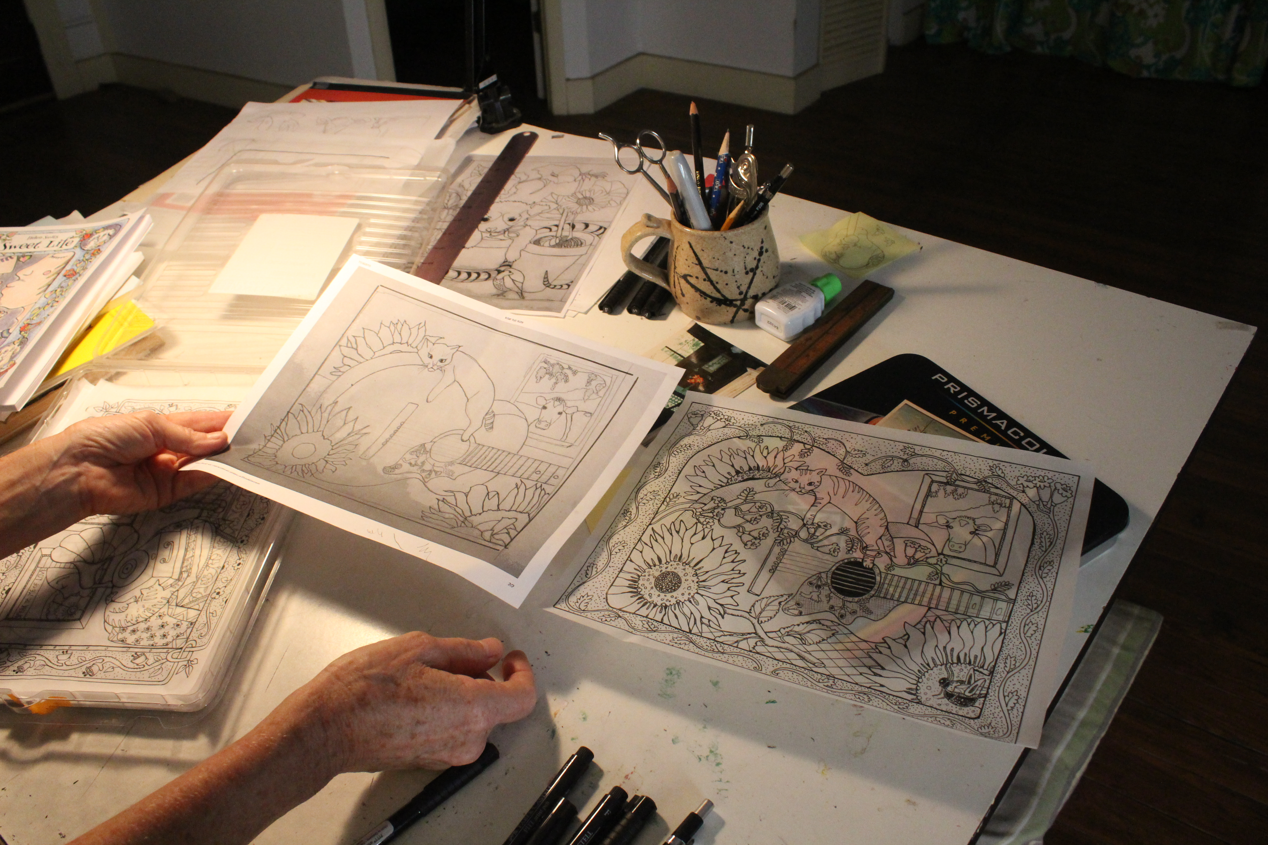 Micanopy Artist Sells Hand-Drawn Adult Coloring Books – WUFT ...