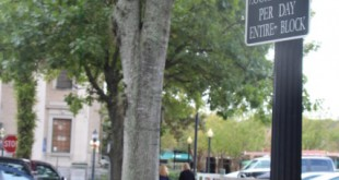 "A two-hour parking sign on SE 1st Street in downtown Gainesville denotes how long one is allowed to park. ""There's a lot of business downtown, and the idea is to keep the traffic moving and to keep spaces open,"" said Andrew Schwich, parking operations attendant with the City of Gainesville Parking Operations. Griffin Horvath/WUFT New"