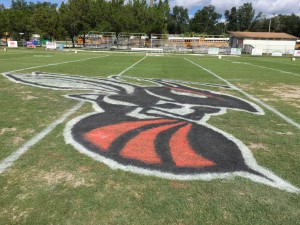 The finished hornet at the 50-yard line on the field. Photo courtesy of Kyle VanZant.