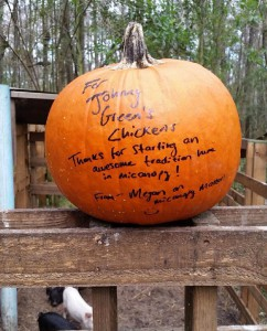 Megan D'Andrea left this pumpkin for Johnny Green at his house. D'Andrea started the Micanopy Matters Facebook page and found out about Green's pumpkin collection there. (Photo courtesy of Johnny Green)
