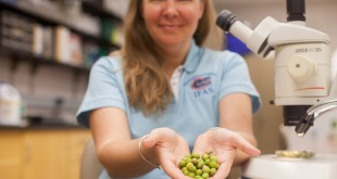 Gillett Kaufman poses with olives. NEEDS BETTER CAPTION Photo by Alex Catalano, provided to WUFT by Gillett Kaufman.