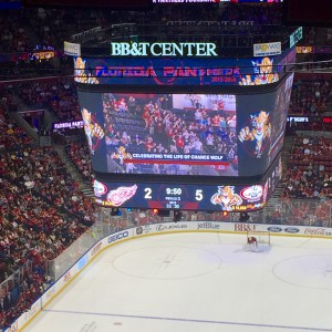 """Chance's family and friends were shown cheering on the Panthers on the scoreboard with the words """"Celebrating the Life of Chance Wolf."""""""