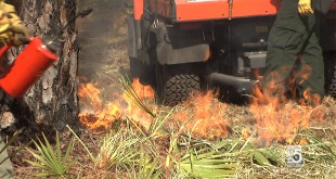 Goethe State Forest Prescribed Burn