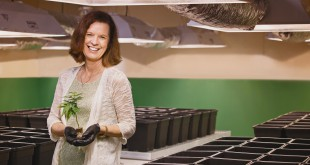 Susan Driscoll, president of Surterra Therapeutics, holding the first therapeutic cannabis plants legally cultivated in Florida. Photo via Surterra Therapeutics.